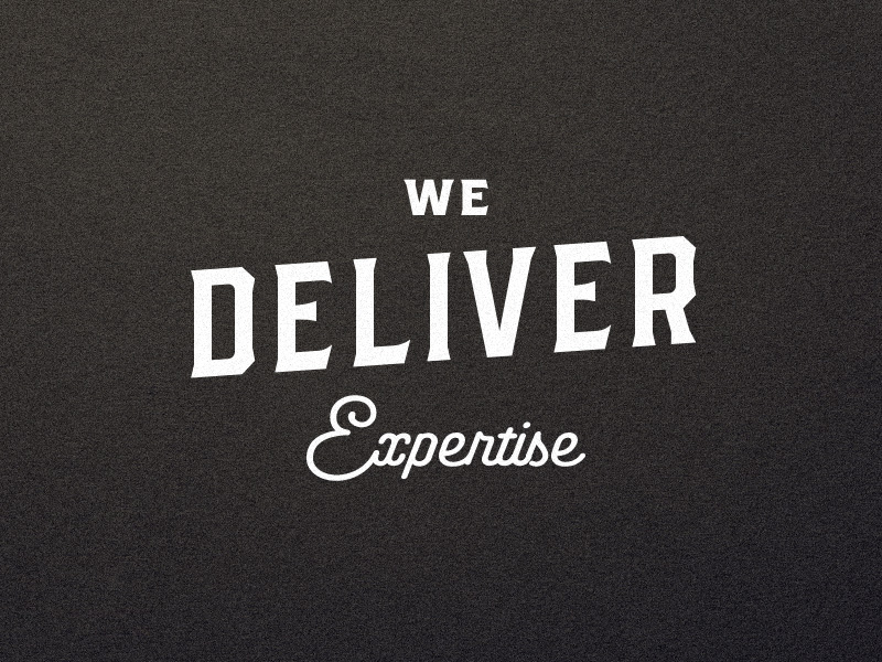 We Deliver Expertise